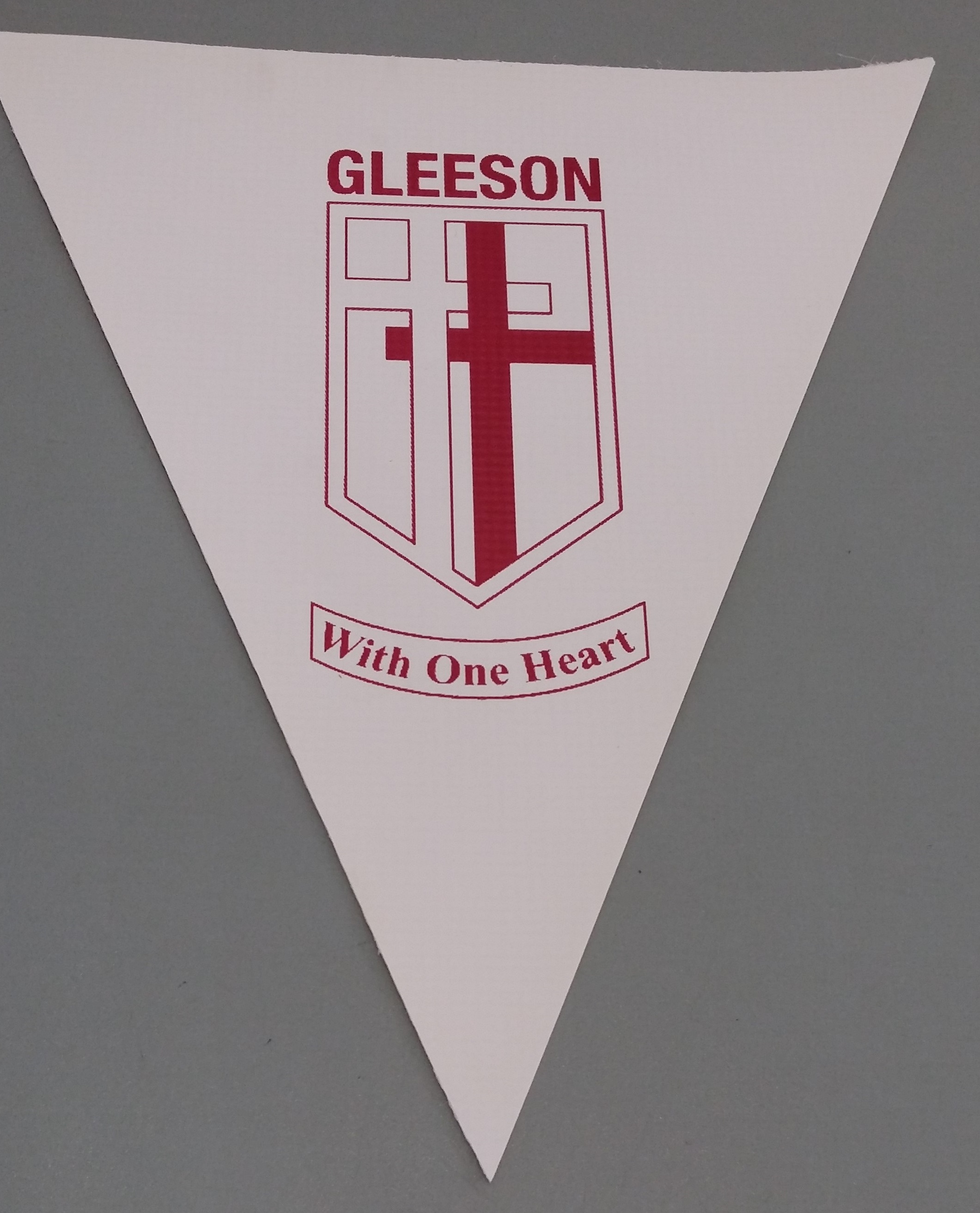 Gleeson College (white)