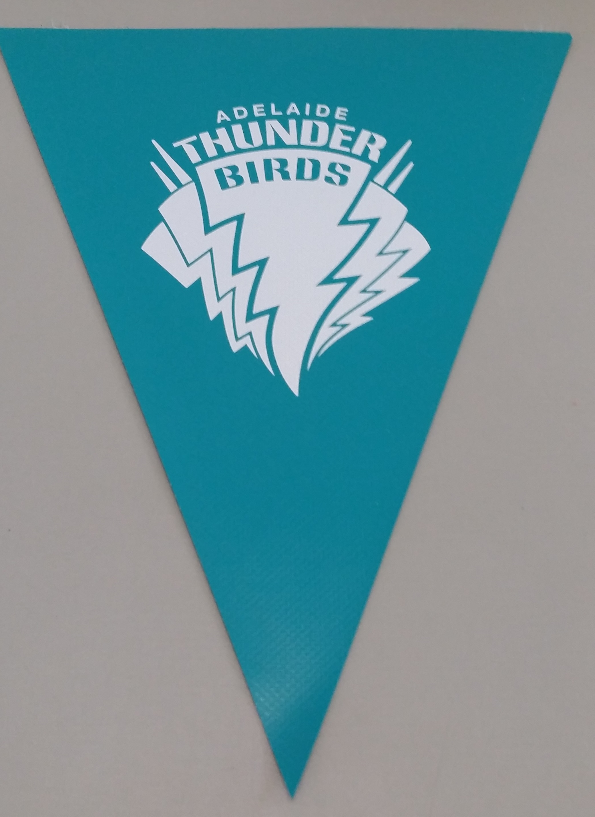 Thunderbirds (teal)
