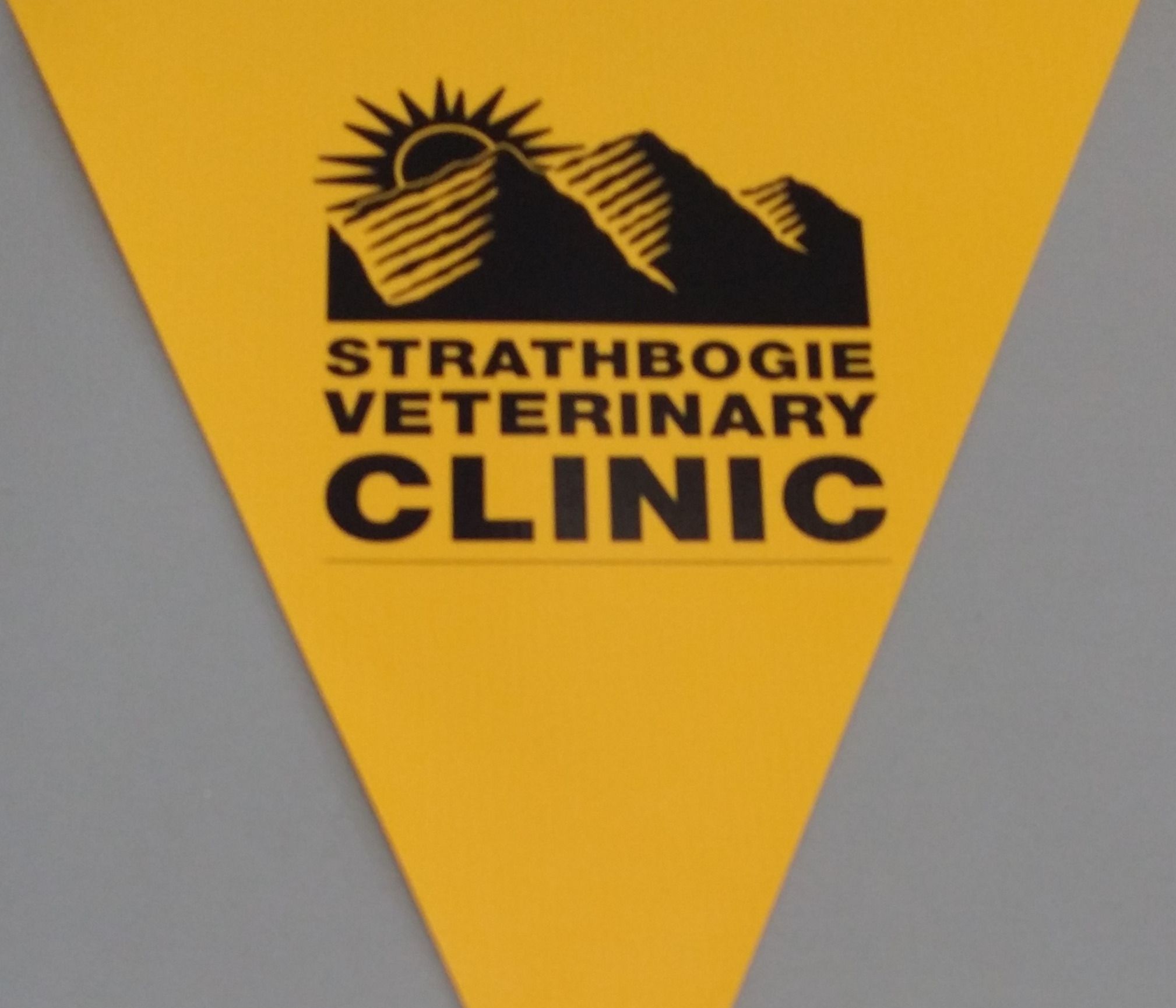 Strathbogie Veterinary Clinic (yellow)